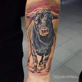 Tatuaze 3d Wzory I Galeria Strona 42 Dziarownia Pl