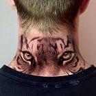 Oczy tygrysa