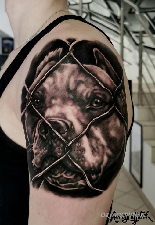 Tatuaż portret pupila w motywie zwierzęta i stylu realistyczne na ramieniu