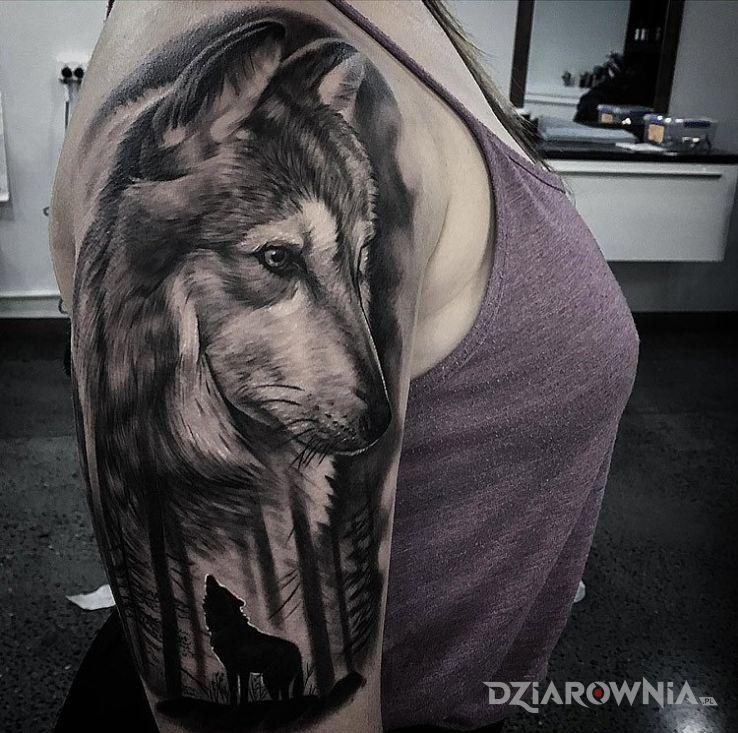Tatuaż samotny wilk - realistyczne