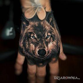 Niebieskooki wilk