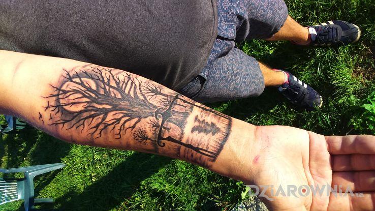Tatuaż Drzewo Autor Giovani Dziarowniapl
