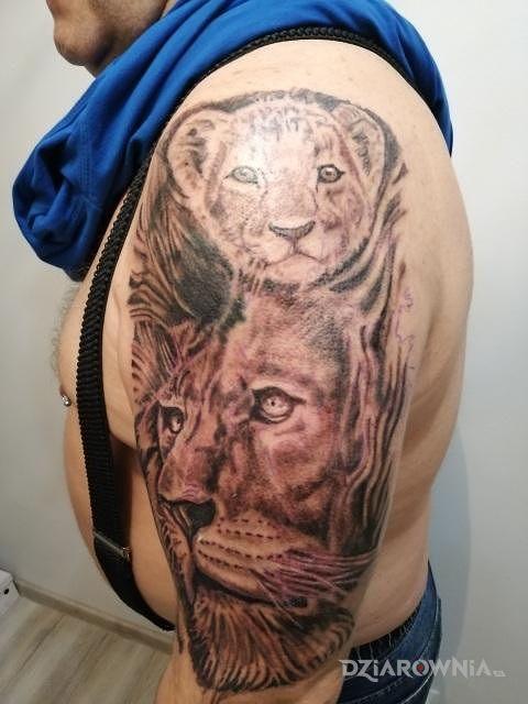 Tatuaż lew w motywie zwierzęta na przedramieniu