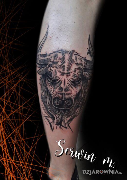 Tatuaż byk w motywie czarno-szare i stylu kreskówkowe / komiksowe na łydce