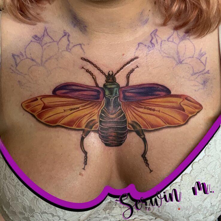 Tatuaż pierwsza sesja żuczka w motywie owady i stylu graficzne / ilustracyjne na piersiach