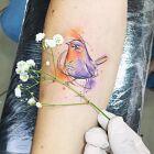 Ptaszeczek