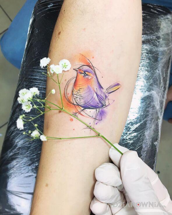 Tatuaż ptaszeczek w motywie kolorowe i stylu graficzne / ilustracyjne na przedramieniu