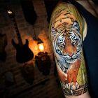 Kroczący tygrys