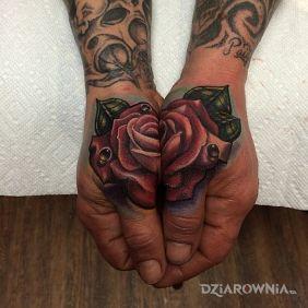 Róża na dłoni