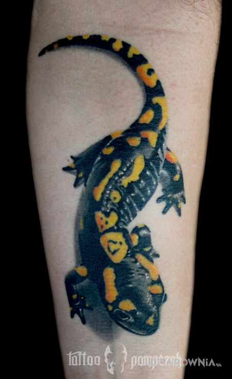 Tatuaż salamandra w motywie kolorowe i stylu realistyczne na przedramieniu