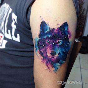 Gwiezdny wilk