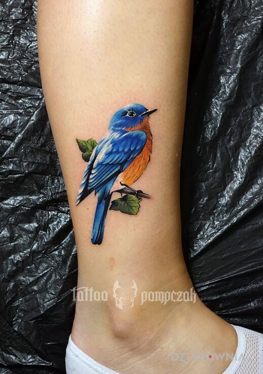 Tatuaż eastern bluebird w motywie seksowne i stylu realistyczne przy kostce