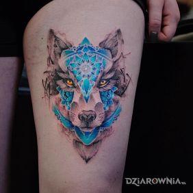 Niesamowicie śliczny wilczek
