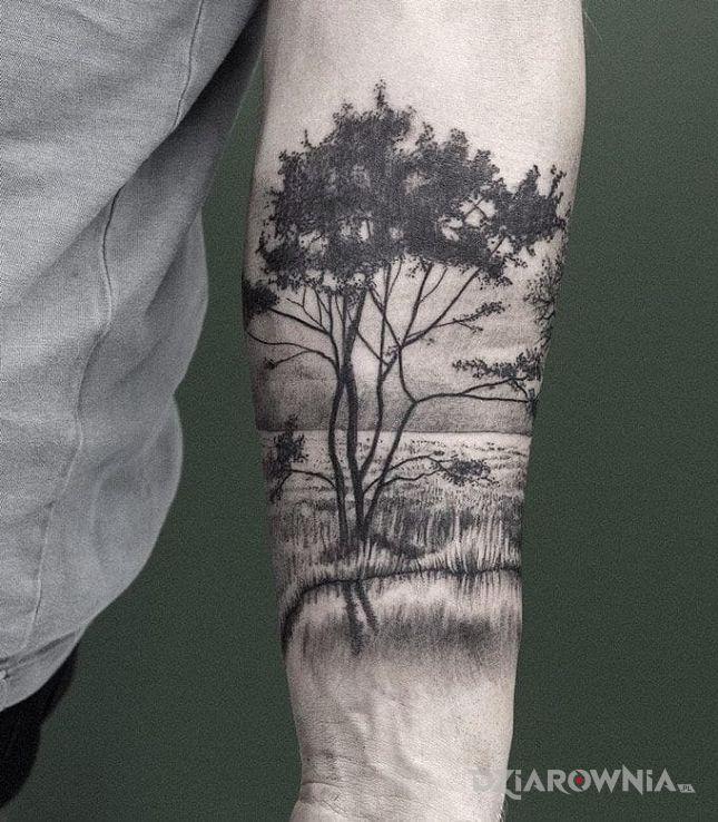 Tatuaż Drzewko Autor Sajmon Dziarowniapl