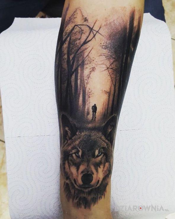 Tatuaż Wilk I Las Autor Drefko Dziarowniapl