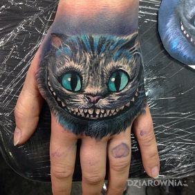 Zwariowany kot