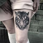 Twarz tygrysa