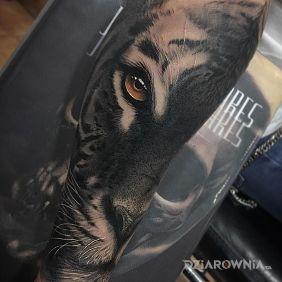 Tatuaże zwierzęta, tiger, dziara dla mężczyzn
