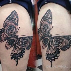 Motyloczacha