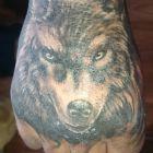 Wilk oznacza siłę
