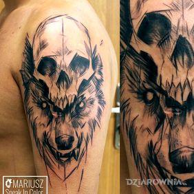 Czaszka wilk