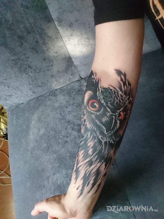 Tatuaż Sowa Autor Katasza Dziarowniapl