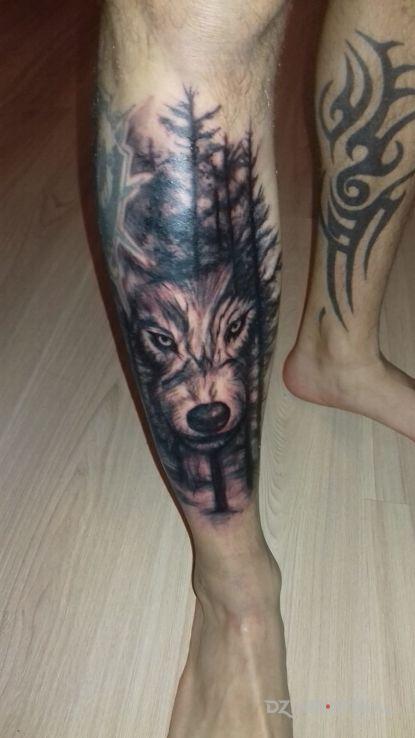 Tatuaż Polska Walczaca Wilk W Lesie Autor Omen2017