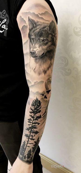 Tatuaż Wilk Las Autor Bghtattoostudio Dziarowniapl