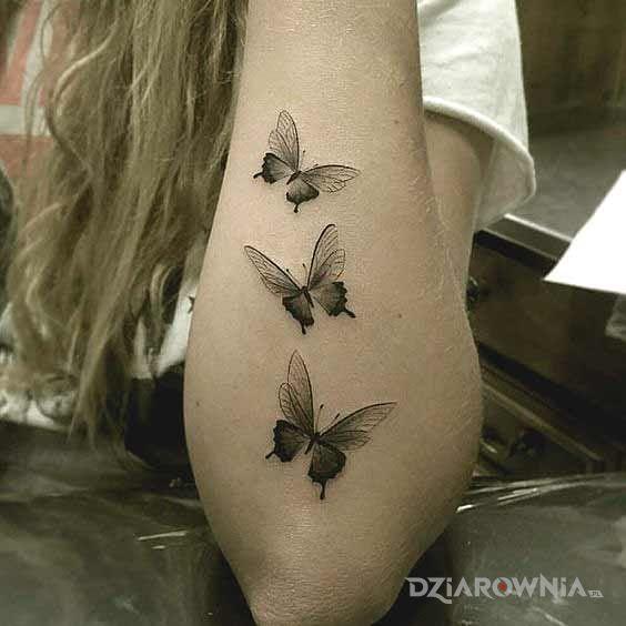 Tatuaż Trzy Motyle Autor Agnieszkaampamp88 Dziarowniapl