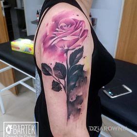 Rozmyta róża