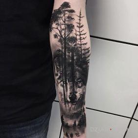 Wilk w lesie