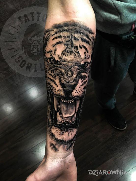 Tatuaż Tygrys Studio Studio Tatuażu Gorilla Dziarowniapl