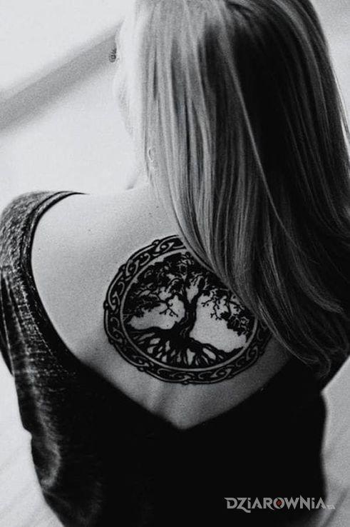 Tatuaż Drzewo życia Autor Dorota Swana Dziarowniapl
