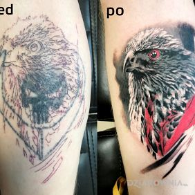 Cover up Orzeł