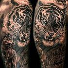 Tygrys i wilk