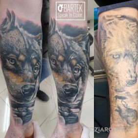 Cover wilka wilkiem