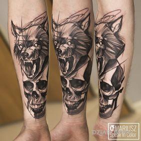 Wilkoczacha