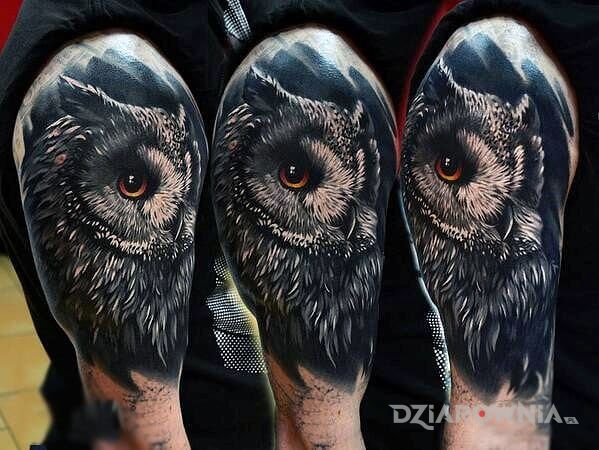 Tatuaż Sowa Autor Jaszczur89 Dziarowniapl