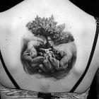 Drzewo w dłoniach