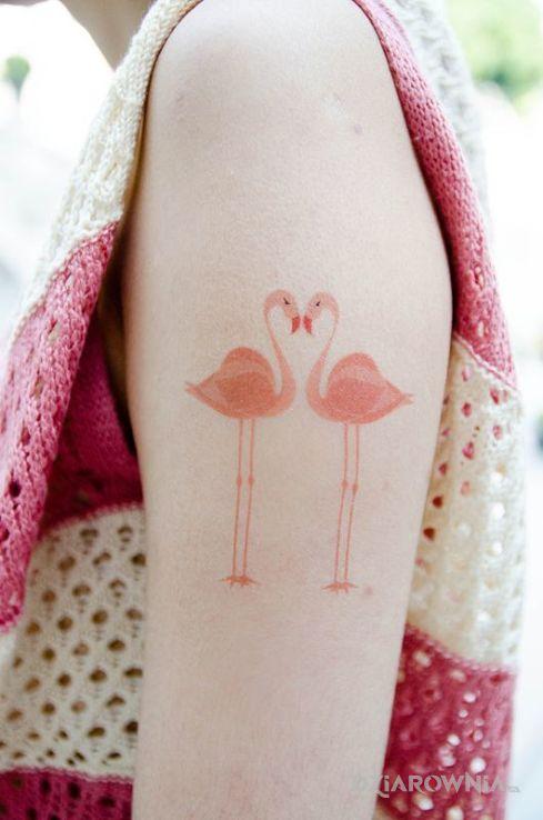 Tatuaż flamingi - kolorowe