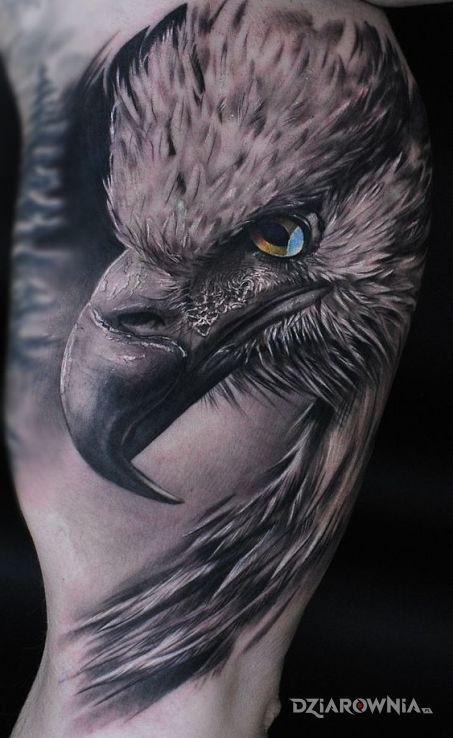 Tatuaż Orzeł Autor Triss Dziarowniapl