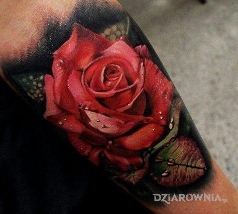 Tatuaż czerwona róża w motywie 3D i stylu realistyczne na przedramieniu