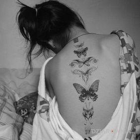 Różne motyle