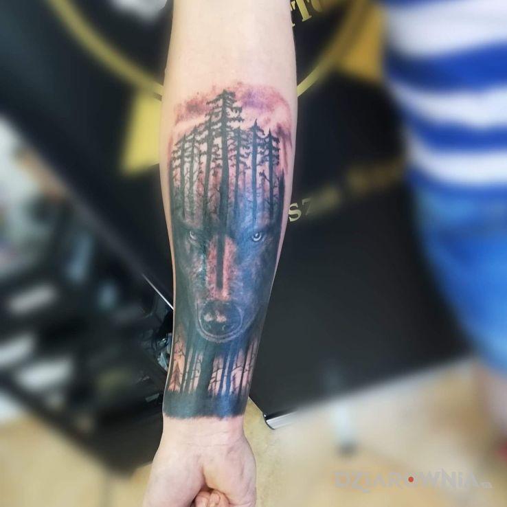 Tatuaż Wilk W Ciemnym Lesie Autor Mateusz Szymon