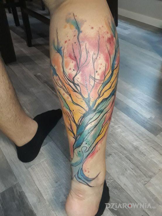 Tatuaż barwne drzewo - kolorowe