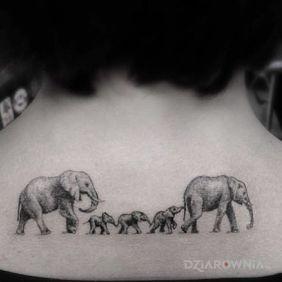 Rodzina sloni