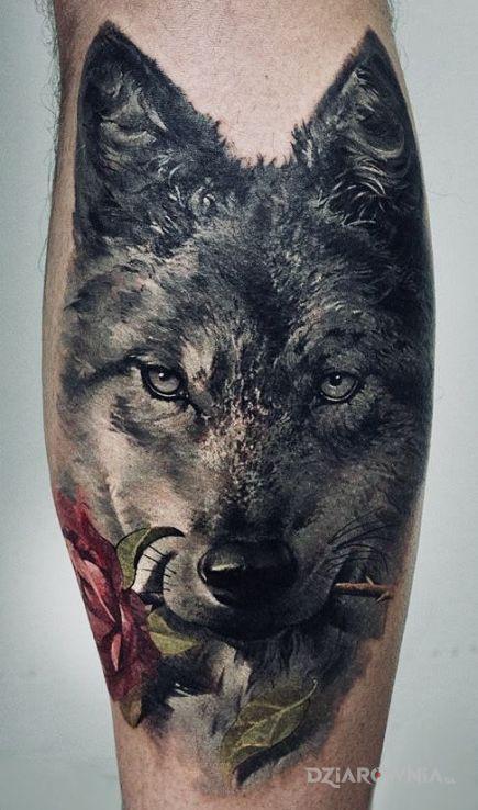 Tatuaże kwiaty, wilk z roza, dziara dla mężczyzn