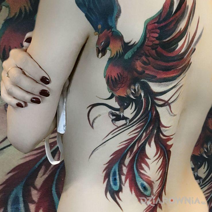 Tatuaż Kolorowy Feniks Dla Kobiet Autor Mokotusz