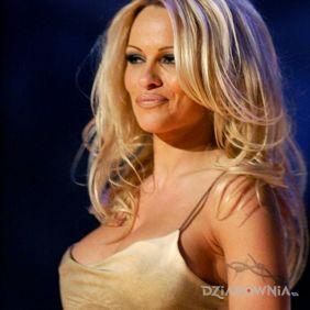 Pamela Anderson - tatuaż kolczatka
