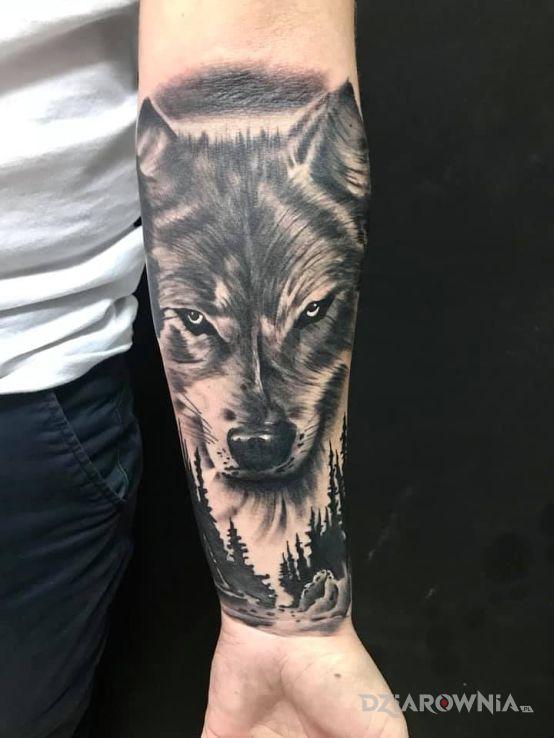 Tatuaż Wilk Autor Michał Mrówczyński Dziarowniapl